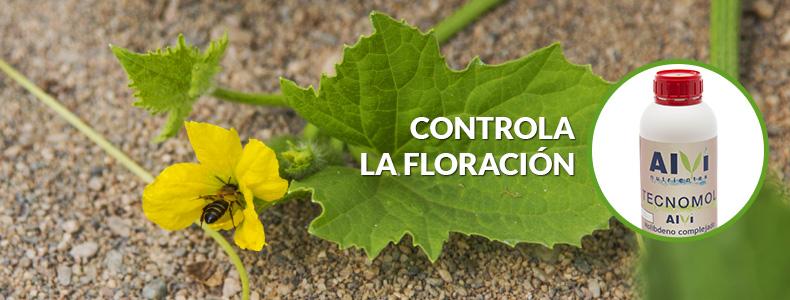 Controla-la-floracion-con-tecnomol